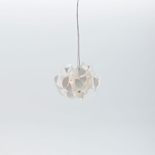Acacia light small led Pendant